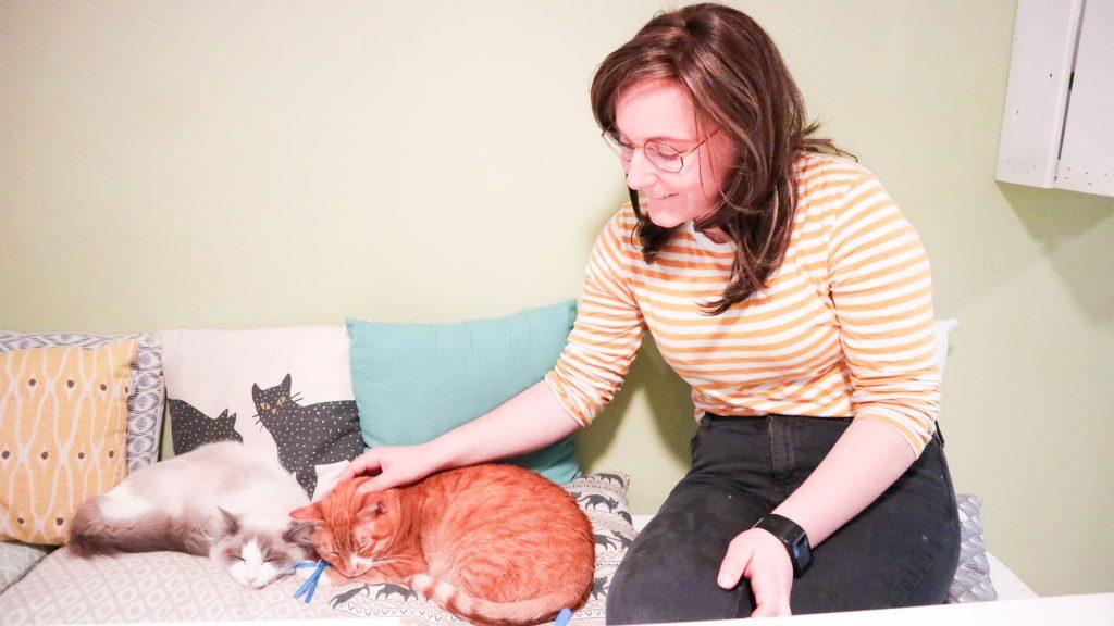 Kattencafé Kattenparadijs Mispoes Den Bosch